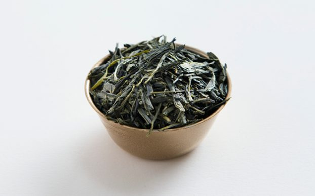 FIRST HARVEST - SHINCHA